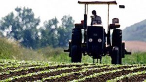 genc-ciftciye-hibe-kredi-300x174 Genç Çiftçi Hibe Kredisi 2017 Başvurusu Ve Gerekli Evraklar