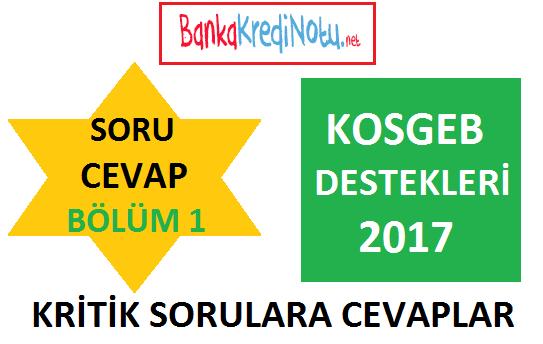 kosgeb-destekleri-2017