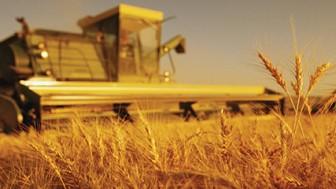 Tarım Kredisi ve Gübre Fiyatları2