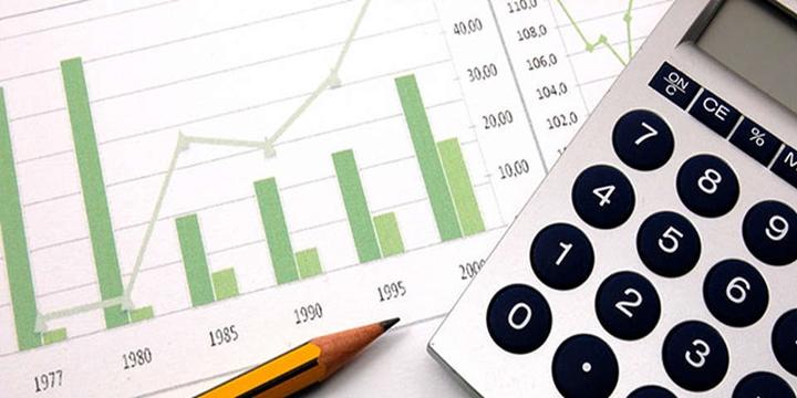Risk raporunda hangi veriler bulunur